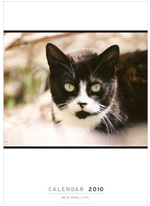 The 2010 REAL FERAL CATS calendar supports Feral cat rescue!